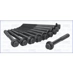 Zestaw śrub głowicy cylindrów AJUSA 81002500