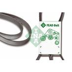 Pasek klinowy wielorowkowy INA FB 6PK1555