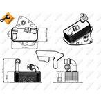 Chłodnica oleju silnikowego NRF 31343