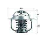 Termostat układu chłodzenia MAHLE TX 201 86D