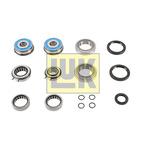 Zestaw naprawczy, mechaniczna skrzynia biegów LUK 462 0226 10